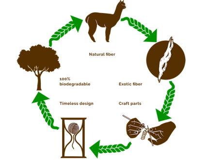 process-alpaca
